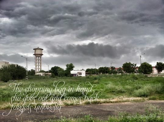 Photograph and Haiku by Tarun Mazumdar